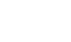 logo light 1 300x181 - logo-light